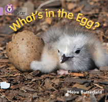 What's in the Egg? Band 00/Lilac