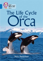 The Life Cycle of the Orca Band 16/Sapphire