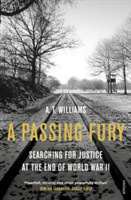 A Passing Fury : Searching for Justice at the End of World War II