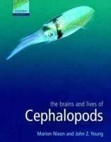 Brains and Lives of Cephalopods