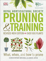RHS Pruning & Training What, When, and How to Prune
