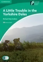 Little Trouble in the Yorkshire Dales Level 3 Lower-intermediate American English