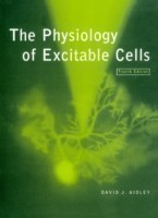 Physiology of Excitable Cells