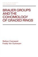 Brauer Groups and the Cohomology of Graded Rings