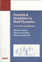 Numerical Simulation in Fluid Dynamics