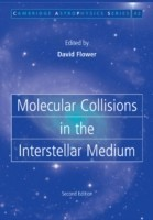 Molecular Collisions in the Interstellar Medium