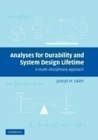 Analyses for Durability and System Design Lifetime A Multidisciplinary Approach