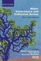 Water Governance and Collective Action Multi-scale Challenges