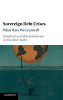 Sovereign Debt Crises What Have We Learned?