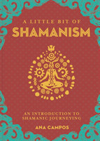 Little Bit of Shamanism, A An Introduction to Shamanic Journeying