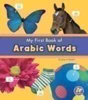 Bilingual Picture Dictionaries Pack A of 6