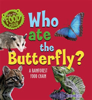 Follow the Food Chain: Who Ate the Butterfly?