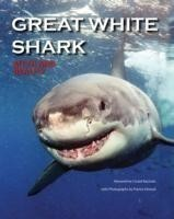 Great White Shark Myth and Reality