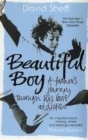 Beautiful Boy A Father's Journey Through His Son's  Addiction