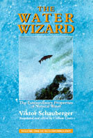 The Water Wizard The Extraordinary Properties of Natural Water