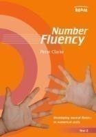 Number Fluency Year 2 Developing mental fluency in numerical skills