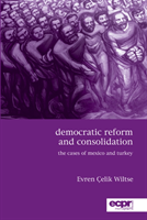 Democratic Reform and Consolidation