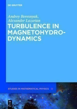 Turbulence in Magnetohydrodynamics