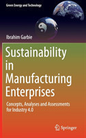 Sustainability in Manufacturing Enterprises Concepts, Analyses and Assessments for Industry 4.0