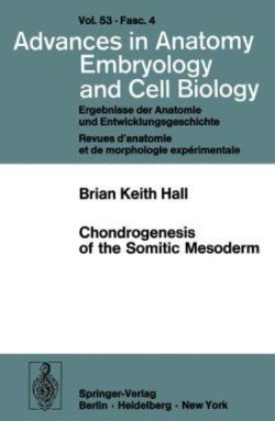 Chondrogenesis of the Somitic Mesoderm