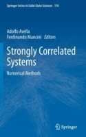 Strongly Correlated Systems Numerical Methods*