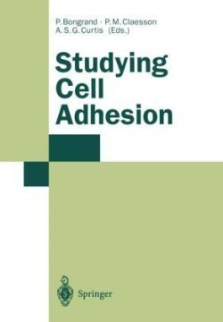 Studying Cell Adhesion