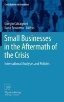 Small Businesses in the Aftermath of the Crisis International Analyses and Policies