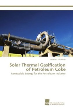 Solar Thermal Gasification of Petroleum Coke