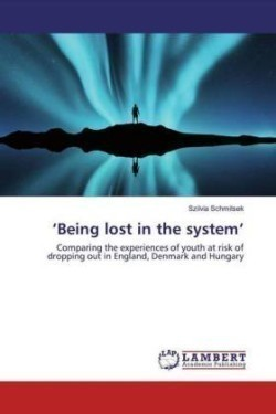 'Being lost in the system'