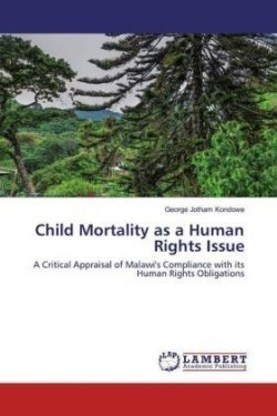 Child Mortality as a Human Rights Issue