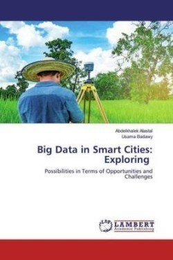 Big Data in Smart Cities: Exploring